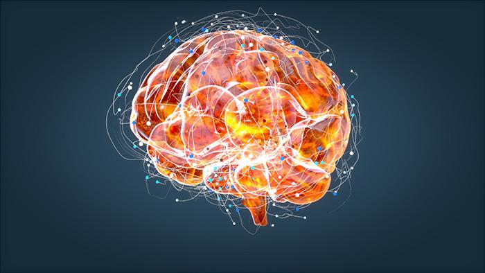 Alzheimer Hastalığı ile ilgili Bilinmesi Gerekenler, Alzheimer Nedir?, Alzheimer Tanısı, Alzheimer Tedavisi, Demans hastalığı halk arasındaki adıyla bunama.